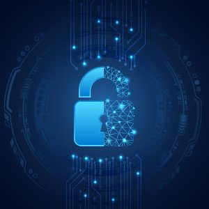 Network Security Services in New Brunswick